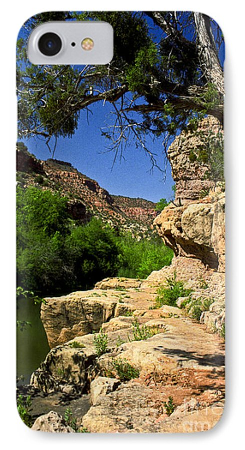 Arizona IPhone 7 Case featuring the photograph Sycamore Canyon by Kathy McClure