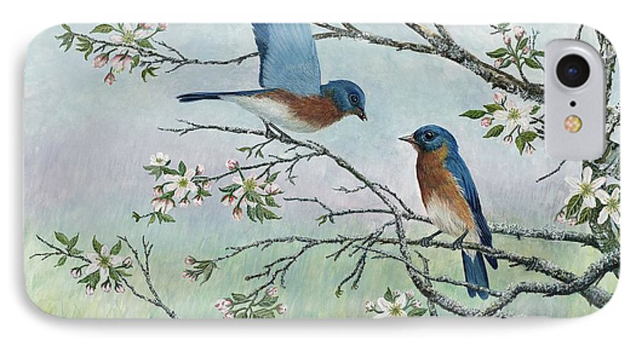 Bluebirds; Trees; Wildlife IPhone 7 Case featuring the painting The Gift by Ben Kiger