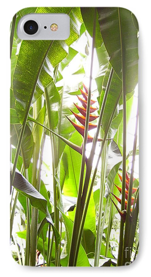 Plants IPhone 7 Case featuring the photograph Tropical2 by Heather Morris