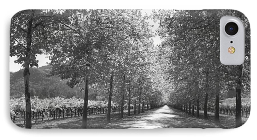 Black And White IPhone 7 Case featuring the photograph Wine Country Napa Black And White by Suzanne Gaff