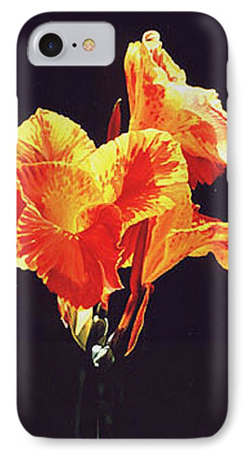 Floral IPhone 7 Case featuring the painting Yellow Canna by Gary Hernandez