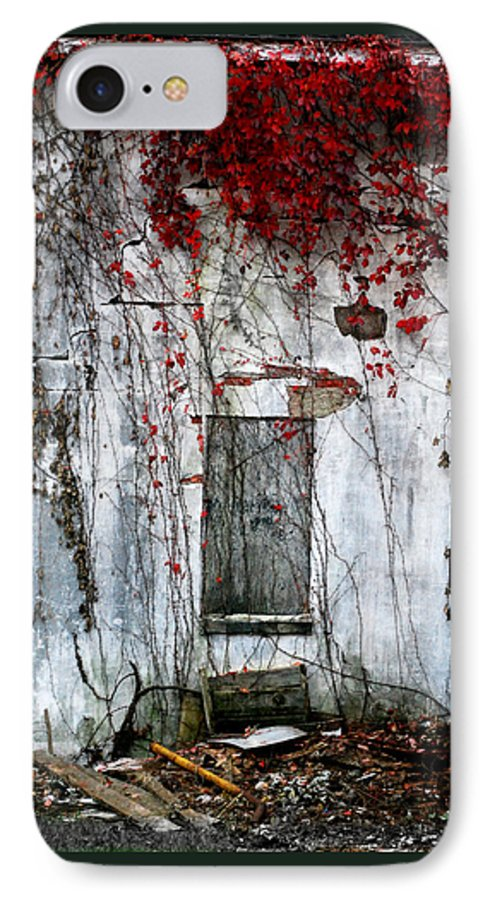 Landscape IPhone 7 Case featuring the photograph Blood Ivy by Mark Orr
