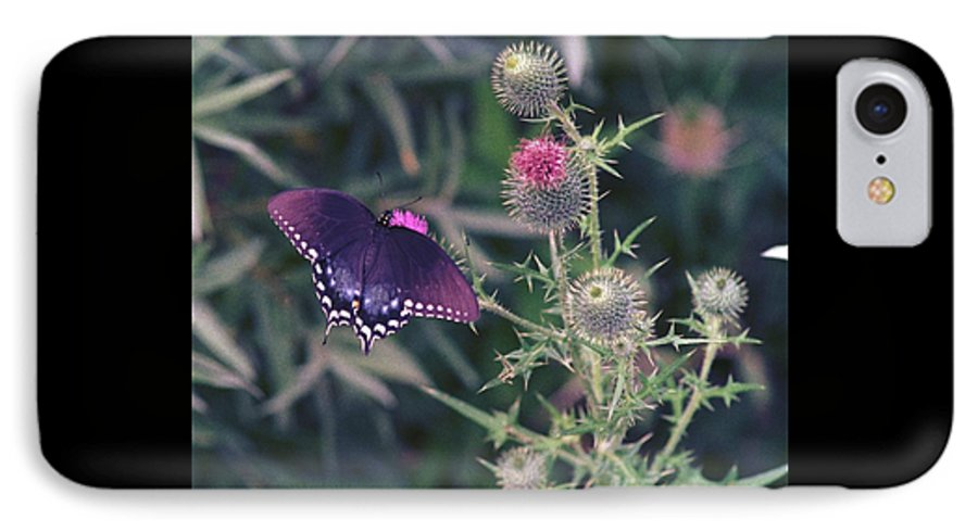 Butterfly IPhone 7 Case featuring the photograph 060207-13 by Mike Davis