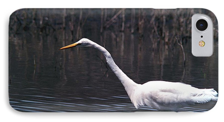 Great Egret IPhone 7 Case featuring the photograph 070406-8 by Mike Davis