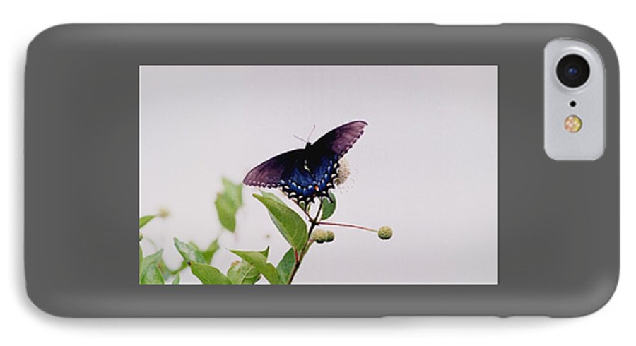 Butterfly IPhone 7 Case featuring the photograph 080706-5 by Mike Davis