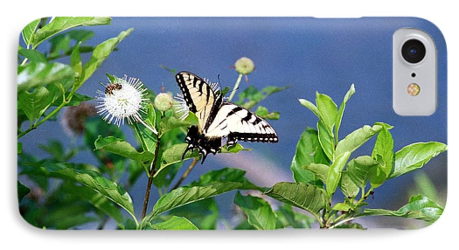 Butterfly IPhone 7 Case featuring the photograph 080706-7 by Mike Davis