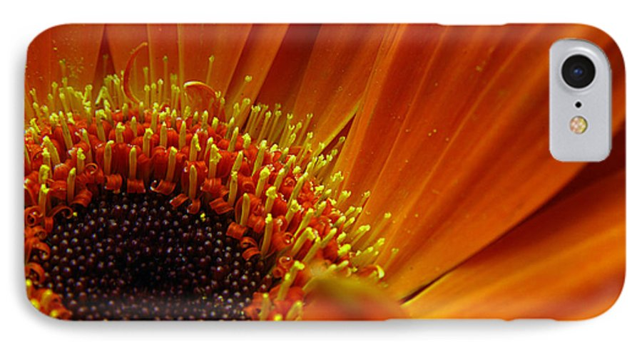 Clay IPhone 7 Case featuring the photograph Floral by Clayton Bruster