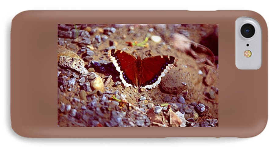 Butterfly IPhone 7 Case featuring the photograph 113093-1 by Mike Davis