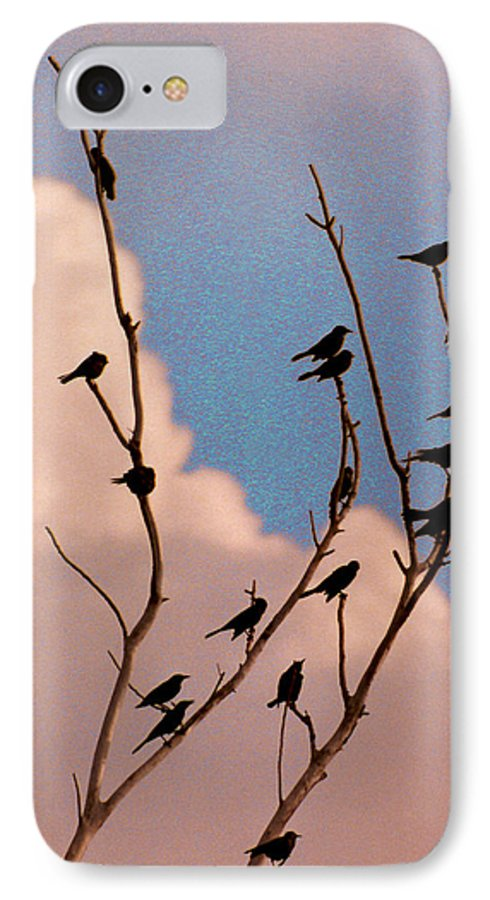 Birds IPhone 7 Case featuring the photograph 19 Blackbirds by Steve Karol