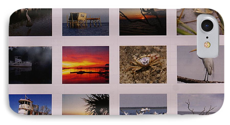 Florida IPhone 7 Case featuring the photograph 2008 Calendar Back Of Gulf Views Edition by Debbie May