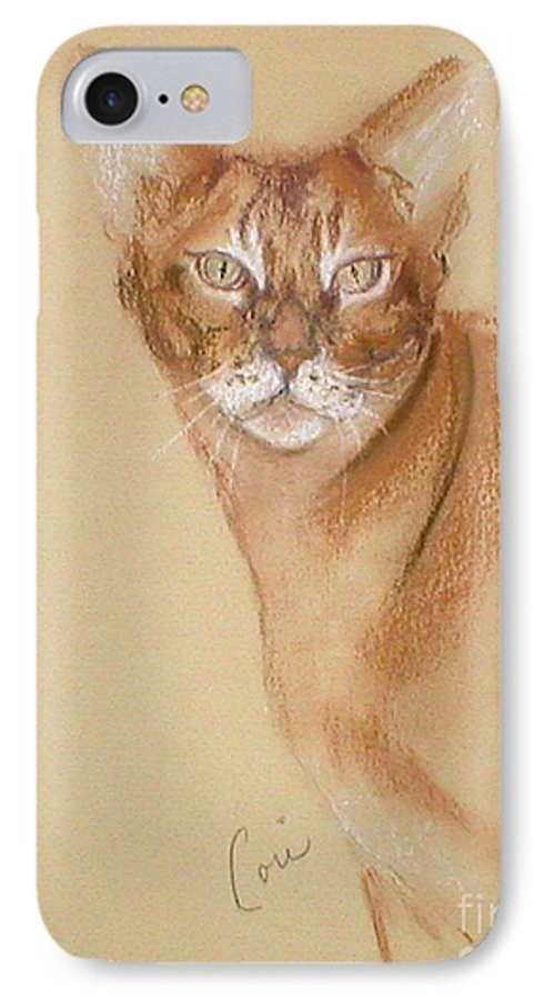 Pastel IPhone 7 Case featuring the drawing Abyssinian by Cori Solomon