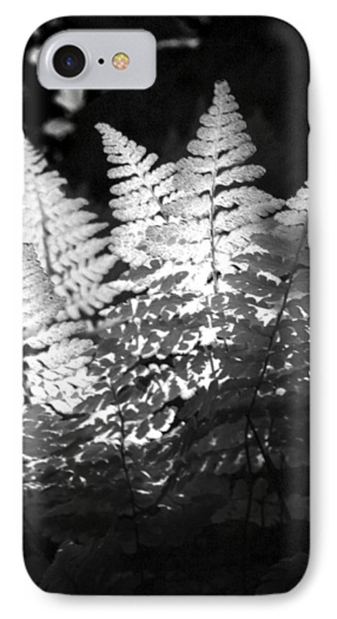 Fern IPhone 7 Case featuring the photograph After Glow by Randy Oberg