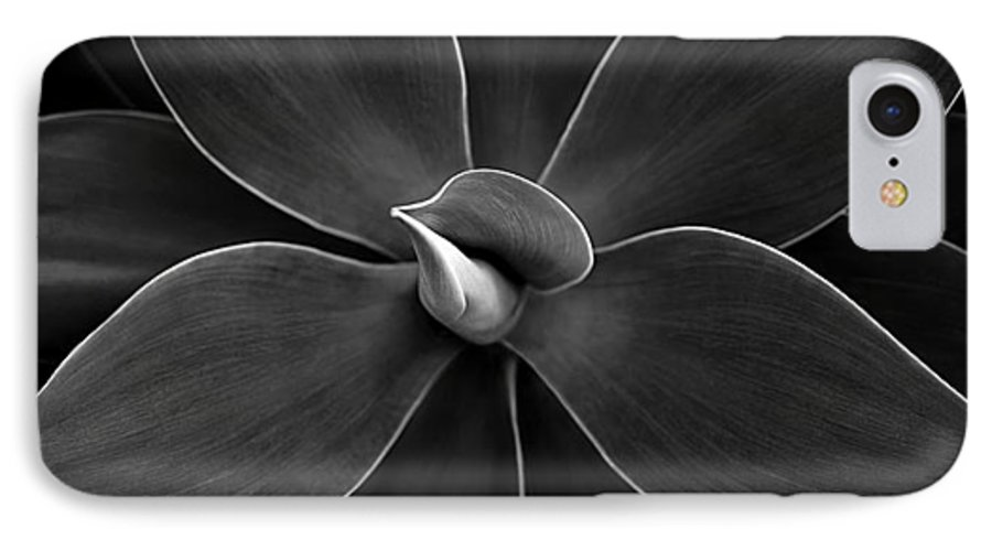Agave IPhone 7 Case featuring the photograph Agave Leaves Detail by Marilyn Hunt