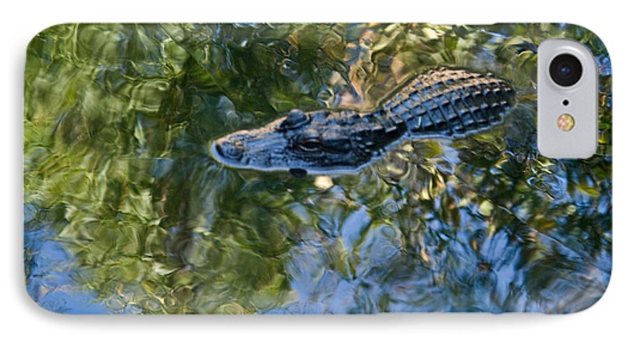 Alligator IPhone 7 Case featuring the photograph Alligator Stalking by Douglas Barnett