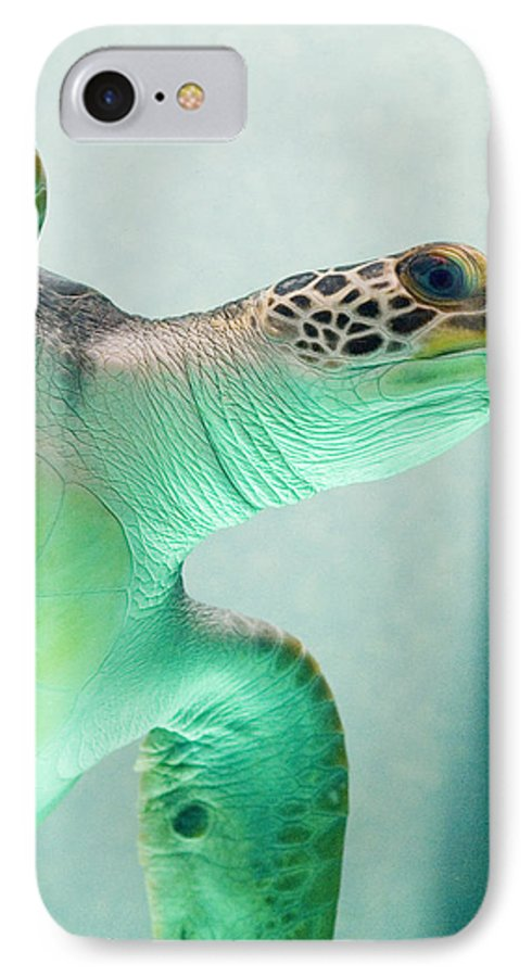 Skip Hunt IPhone 7 Case featuring the photograph Angel 2 by Skip Hunt