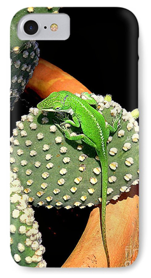 Nature IPhone 7 Case featuring the photograph Anole Hanging Out With Cactus by Lucyna A M Green