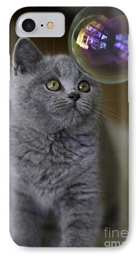Cat IPhone 7 Case featuring the photograph Archie With Bubble by Sheila Smart Fine Art Photography