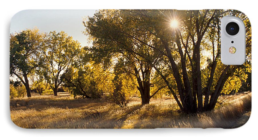Fall IPhone 7 Case featuring the photograph Autum Sunburst by Jerry McElroy