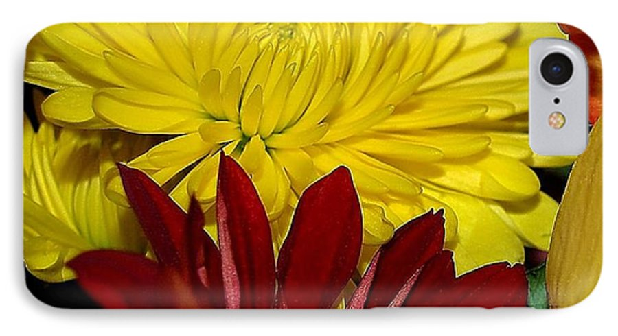 Chrysanthemum Photography IPhone 7 Case featuring the photograph Autumn Colors by Patricia Griffin Brett