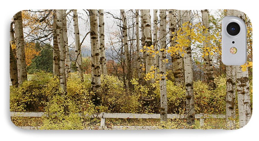 Grove IPhone 7 Case featuring the photograph Autumn Grove by Idaho Scenic Images Linda Lantzy