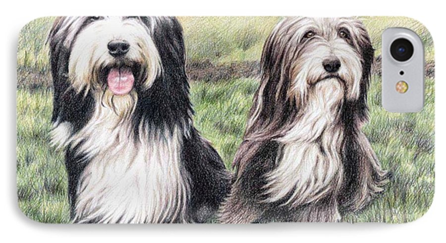 Dogs IPhone 7 Case featuring the drawing Bearded Collies by Nicole Zeug