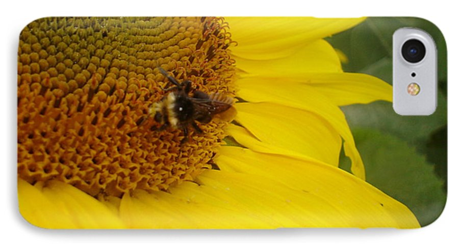 Bee IPhone 7 Case featuring the photograph Bee On Sunflower 3 by Chandelle Hazen