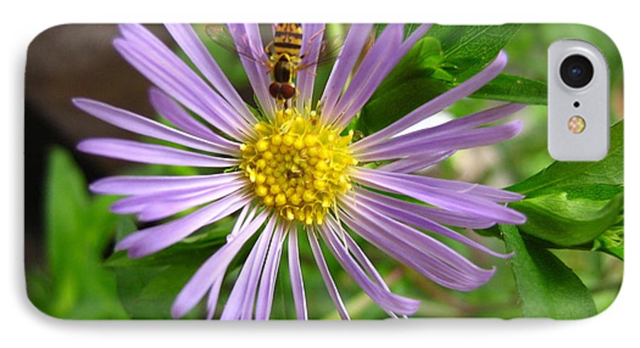 Bee IPhone 7 Case featuring the photograph Bee On Wildflower by Melissa Parks