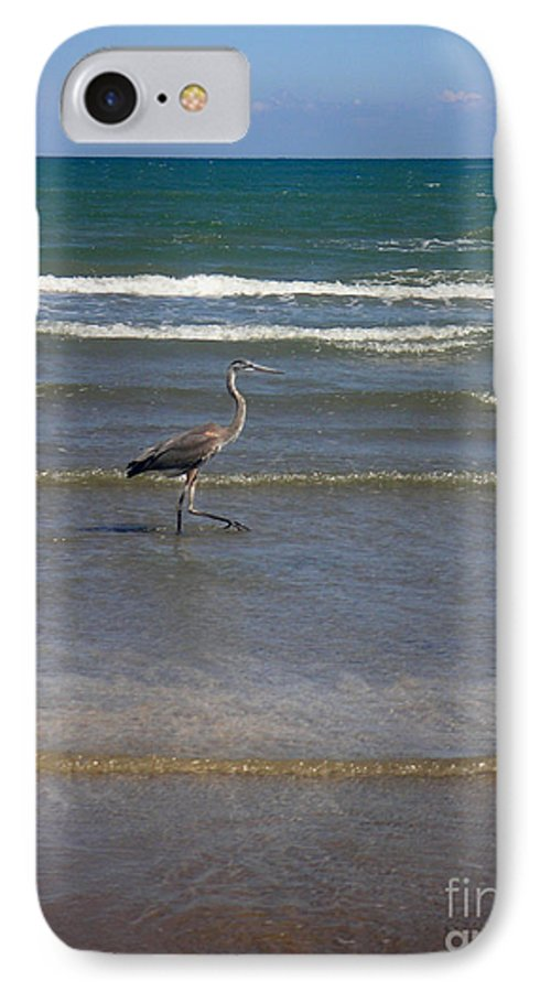Nature IPhone 7 Case featuring the photograph Being One With The Gulf - In Step by Lucyna A M Green