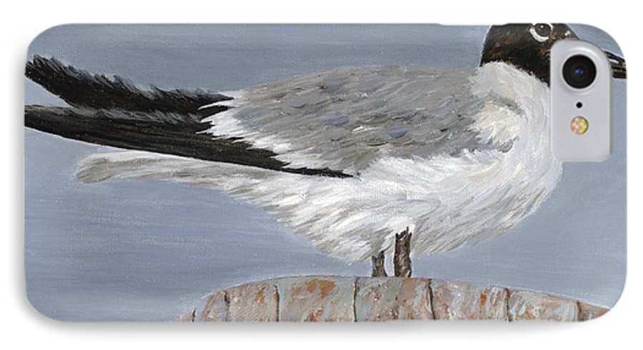 Seagull IPhone 7 Case featuring the painting Bimini Gull by Danielle Perry