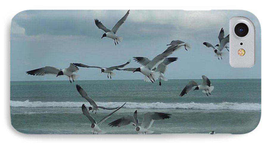 Birds IPhone 7 Case featuring the photograph Birds In Flight by Barb Montanye Meseroll