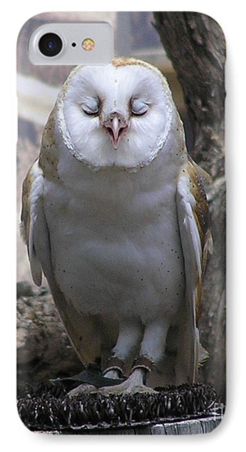 Barn IPhone 7 Case featuring the photograph Blinking Owl by Louise Magno