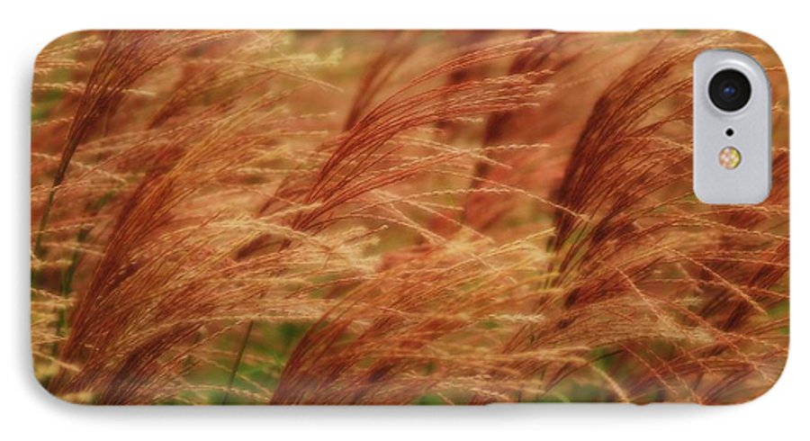 Win IPhone 7 Case featuring the photograph Blowing In The Wind by Gaby Swanson