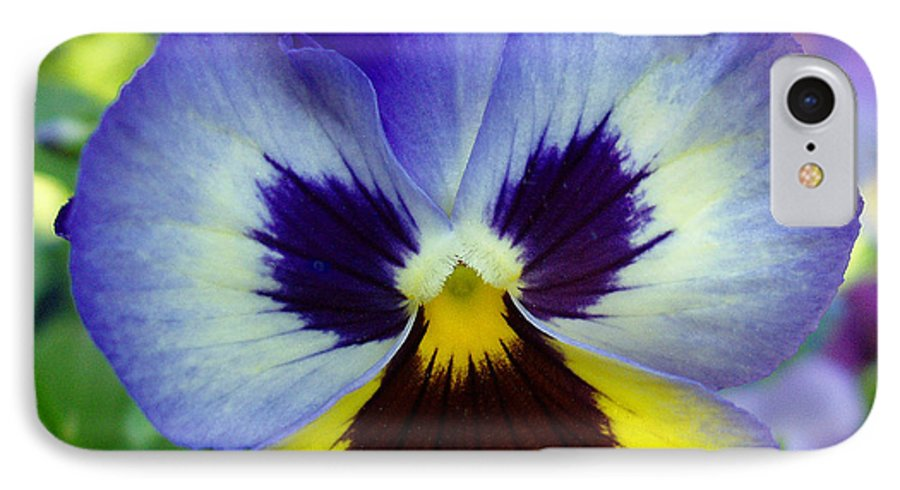 Flowers IPhone 7 Case featuring the photograph Blue And Yellow Pansy by Nancy Mueller