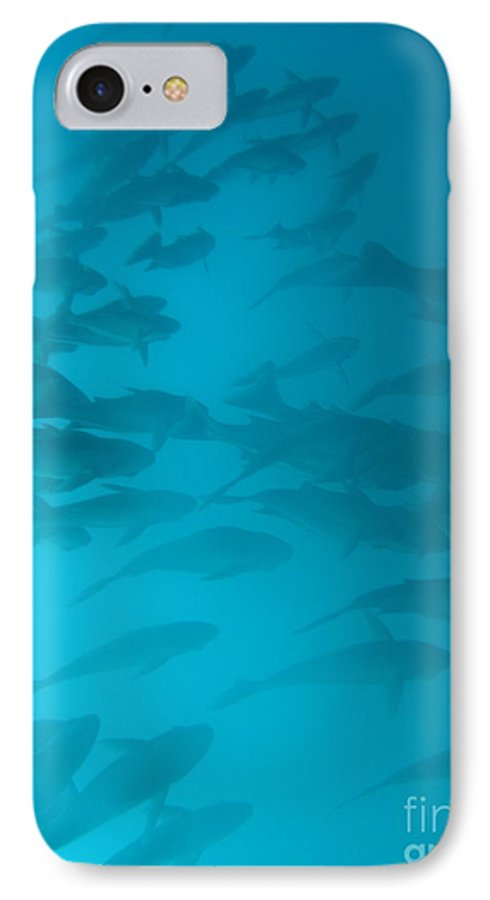 Underwater IPhone 7 Case featuring the photograph Blue Flash by Chad Natti