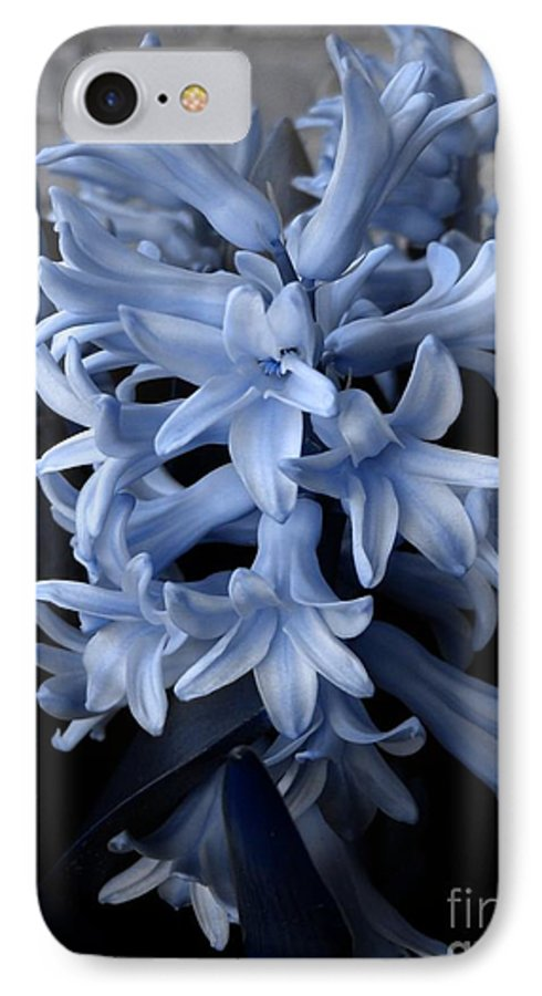 Blue IPhone 7 Case featuring the photograph Blue Hyacinth by Shelley Jones
