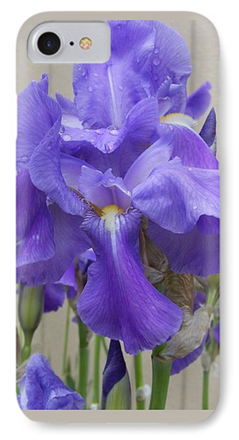 Flowers IPhone 7 Case featuring the photograph Blue Iris by Laurie Kidd