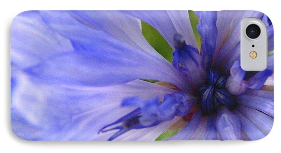 Flower IPhone 7 Case featuring the photograph Blue Princess by Rhonda Barrett