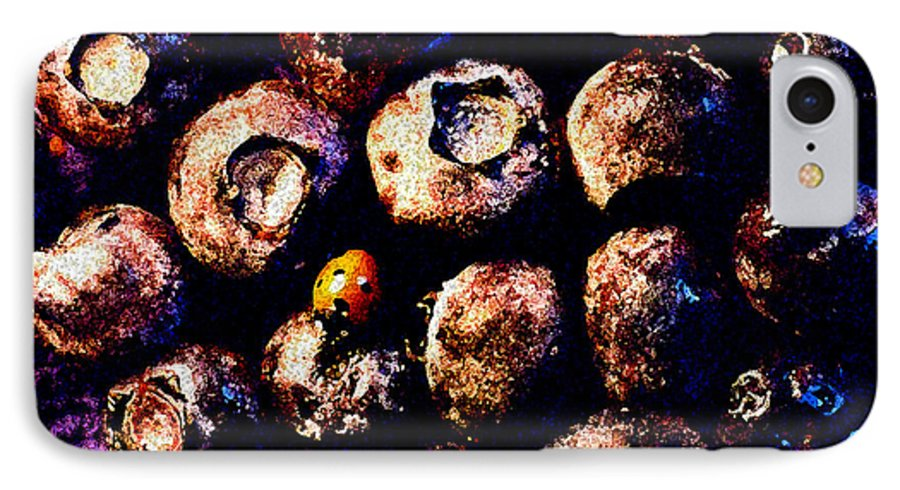 Blueberries IPhone 7 Case featuring the photograph Blueberries And Ladybug by Nancy Mueller