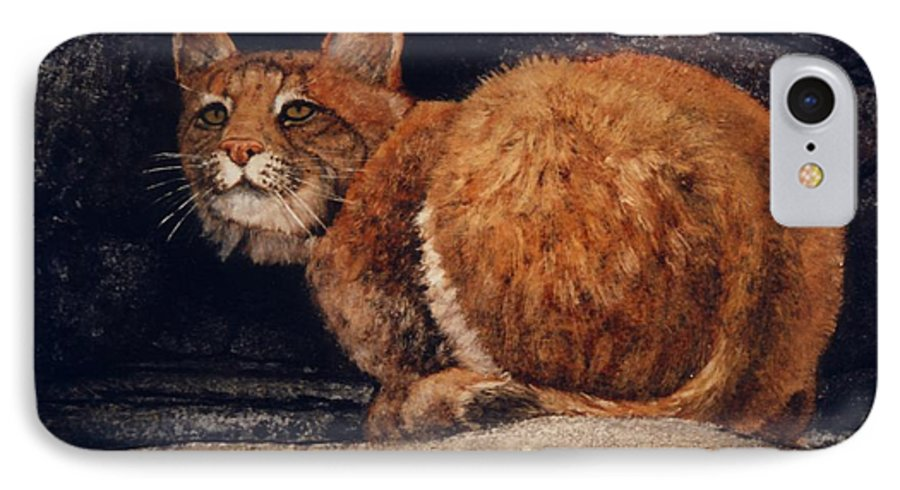 Wildlife IPhone 7 Case featuring the painting Bobcat On Ledge by Frank Wilson
