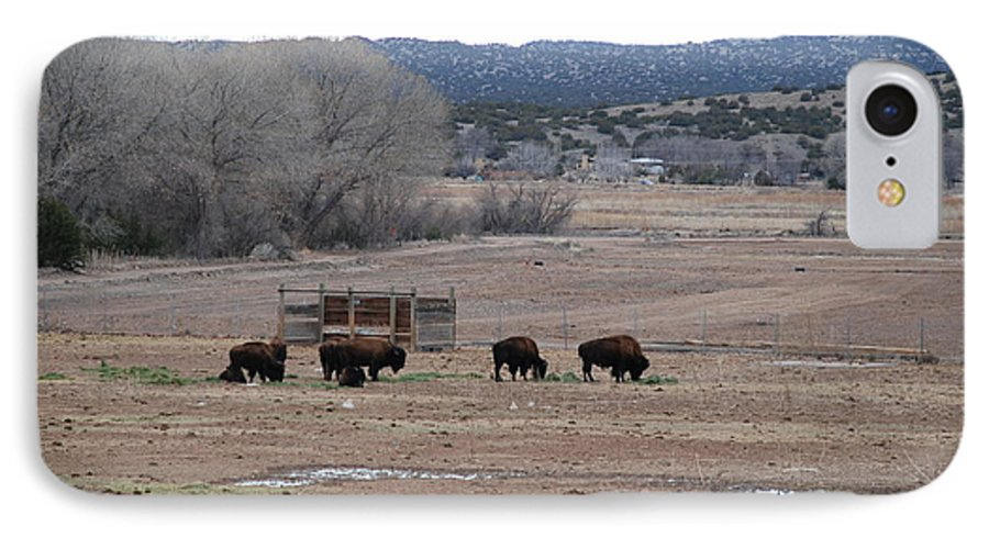 Buffalo IPhone 7 Case featuring the photograph Buffalo New Mexico by Rob Hans