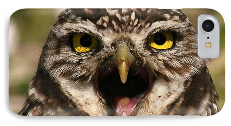 Owl IPhone 7 Case featuring the photograph Burrowing Owl Eye To Eye by Max Allen