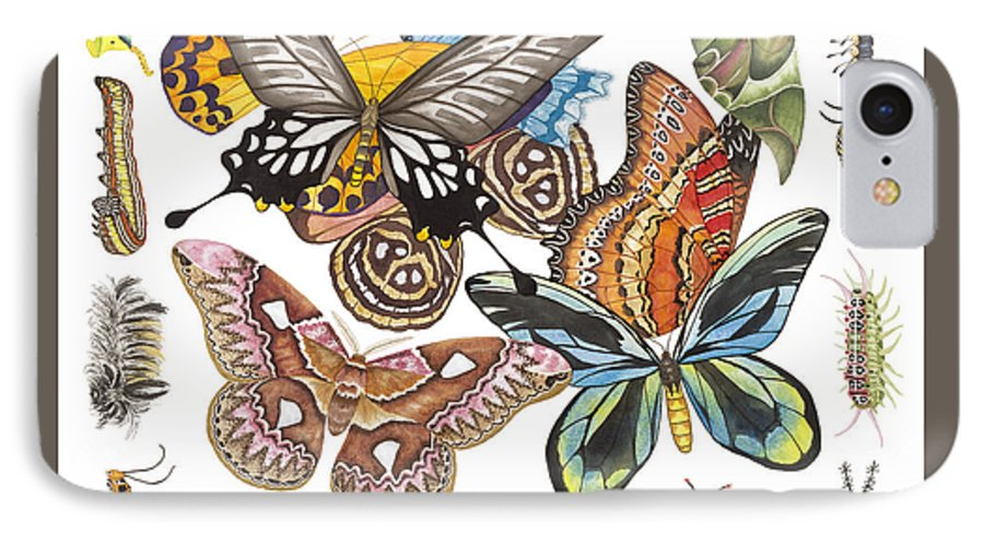 Butterflies IPhone 7 Case featuring the painting Butterflies Moths Caterpillars by Lucy Arnold