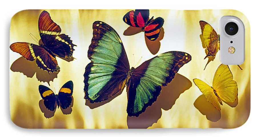 Animals IPhone 7 Case featuring the photograph Butterflies by Tony Cordoza