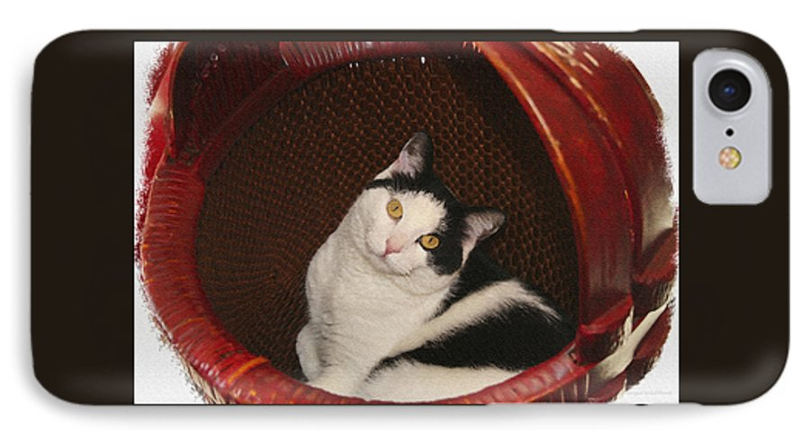 Cat IPhone 7 Case featuring the photograph Cat In A Basket by Margie Wildblood
