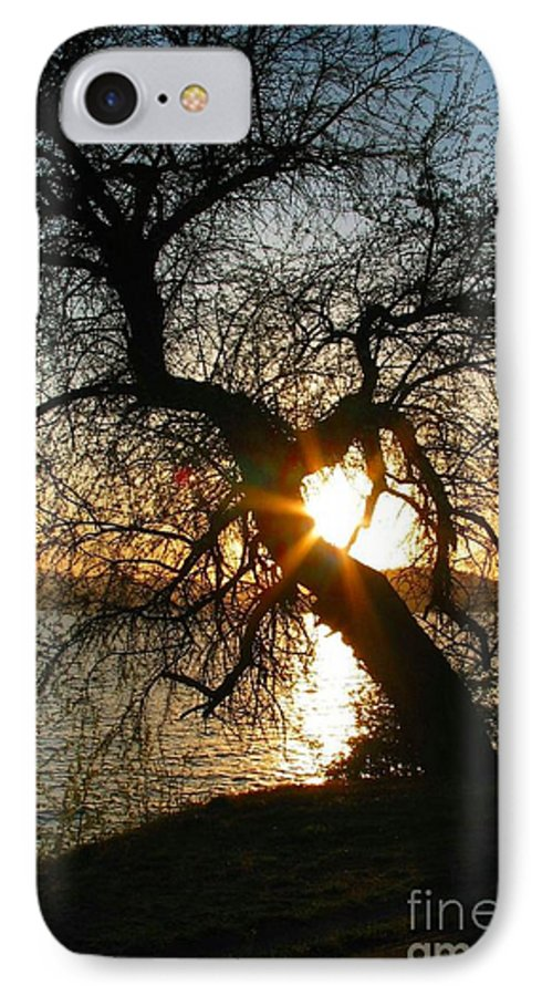 Tree IPhone 7 Case featuring the photograph Character by Idaho Scenic Images Linda Lantzy