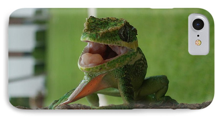 Iguana IPhone 7 Case featuring the photograph Chilling On Wood by Rob Hans