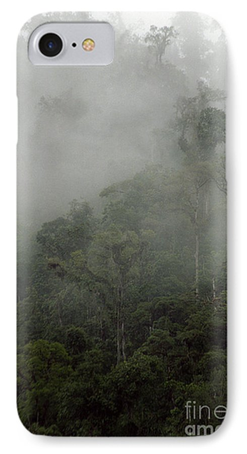 Rainforest IPhone 7 Case featuring the photograph Cloud Forest by Kathy McClure