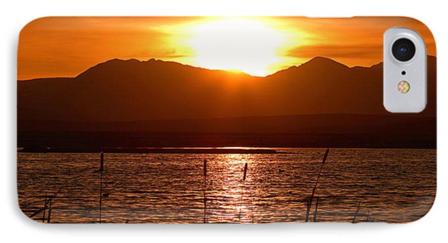 Colorado IPhone 7 Case featuring the photograph Colorado Marsh At Sunset by Max Allen