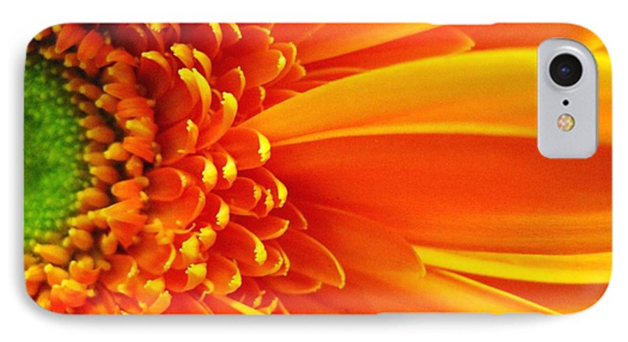 Red IPhone 7 Case featuring the photograph Colors Galore by Rhonda Barrett