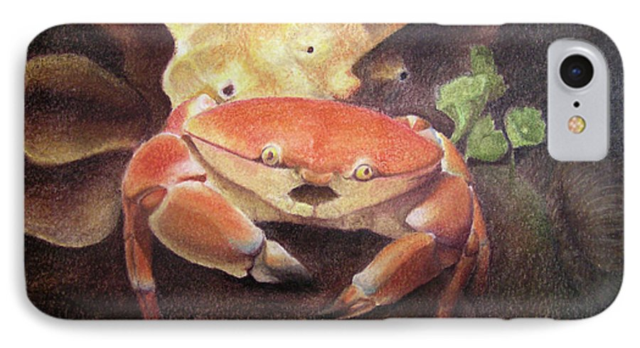 Animals IPhone 7 Case featuring the painting Coral Crab by Adam Johnson